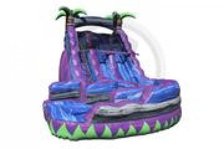 Purple Crush Dual Lane Waterslide